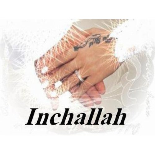 inchallah rencontre deja membre est inscrit)